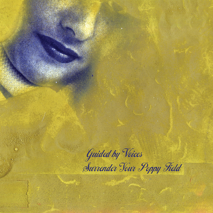 "Guided By Voices ""Surrender Your Poppy Field"""