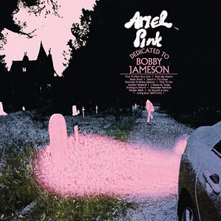 "Ariel Pink ""Dedicated To Bobby Jameson"""
