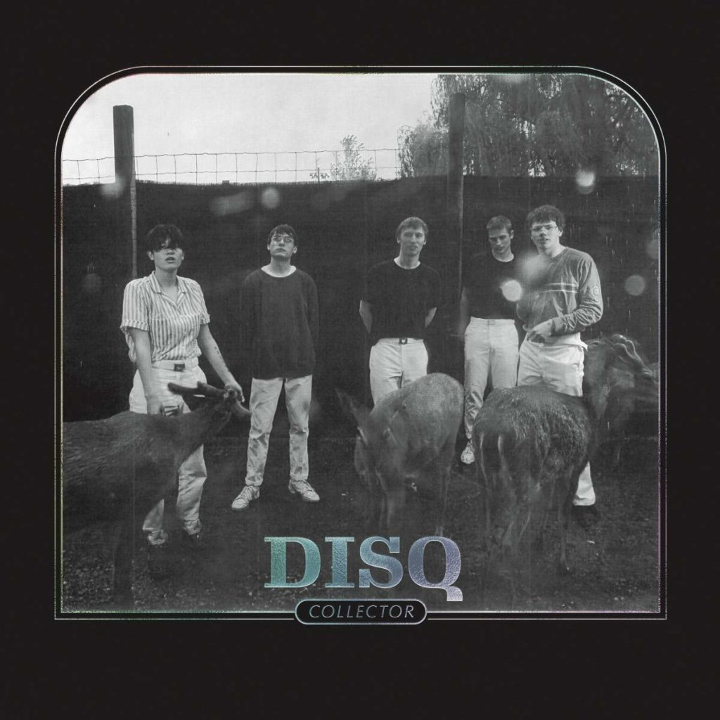 "DISQ ""Collector"""